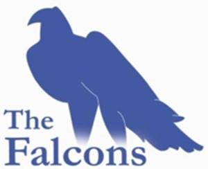 Falcons Jpeg logo